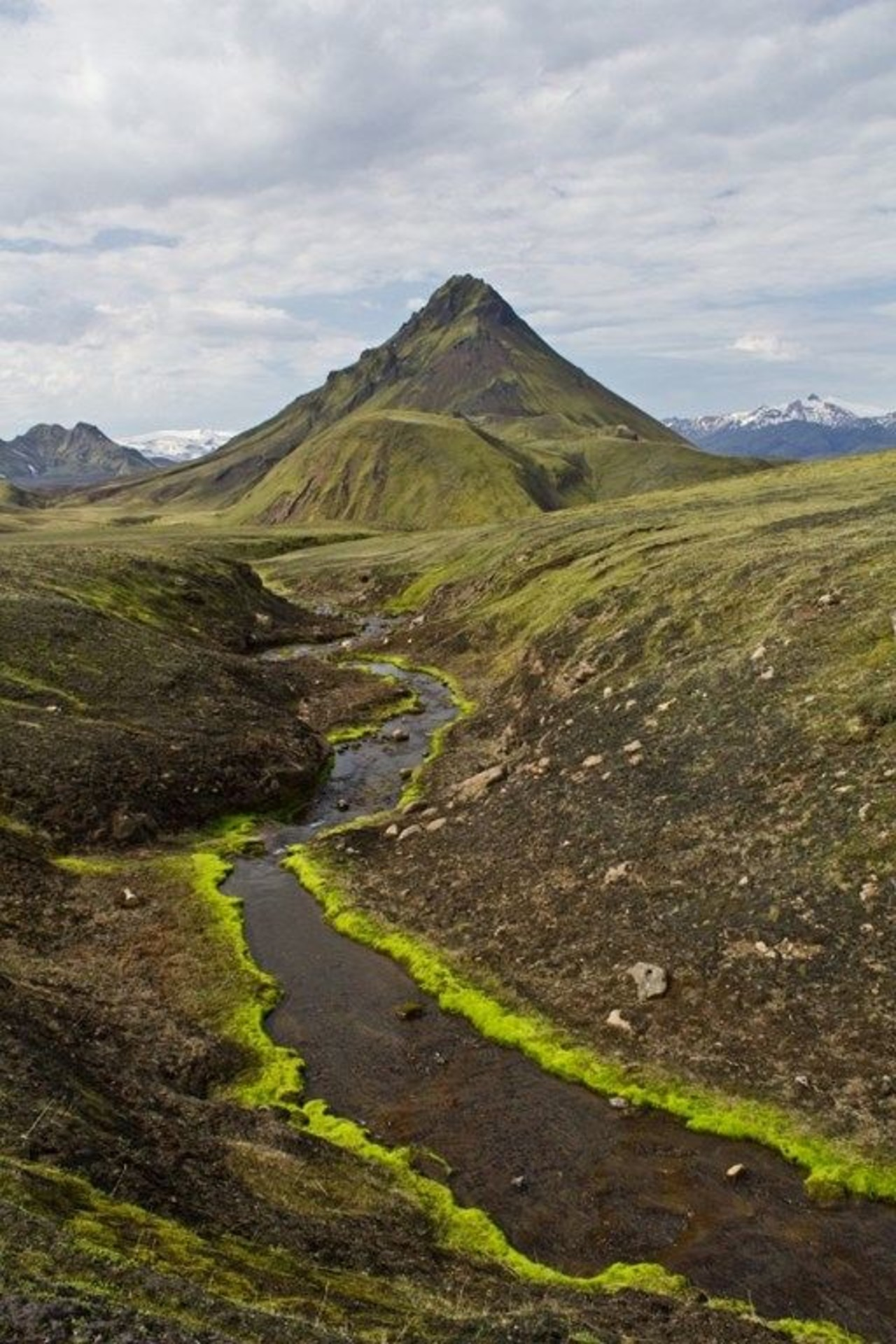 A small river and a mountain in a green landscape on the Laugavegur trek