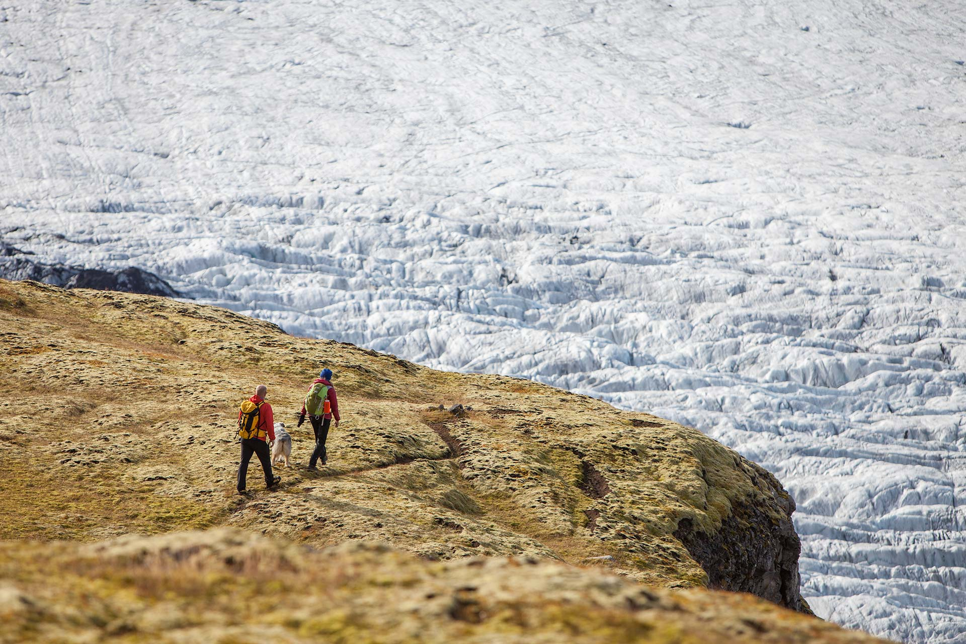 People on a hiking trail with views over a glacier